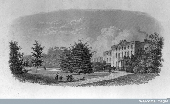 L0012305 Engraving: Brislington house Credit: Wellcome Library, London. Wellcome Images images@wellcome.ac.uk http://wellcomeimages.org Facade and gardens of Brislington house. Engraving History and present state of Brislington house Fox, Francis Charles Published: 1836 Copyrighted work available under Creative Commons Attribution only licence CC BY 4.0 http://creativecommons.org/licenses/by/4.0/