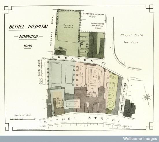 L0034820 Map of Bethel Hospital, Norwich 1906