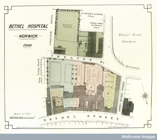 L0034820 Map of Bethel Hospital, Norwich 1906