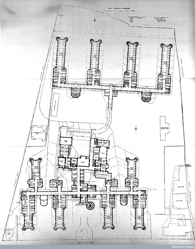 L0011802 Plan of Royal Infirmary, Edinburgh, 1893.
