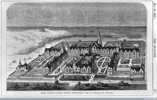 L0011790 The County Lunatic Asylum, Brentwood, Essex: bird's eye view Credit: Wellcome Library, London. Wellcome Images images@wellcome.ac.uk http://wellcomeimages.org The County Lunatic Asylum, Brentwood, Essex: bird's eye view. Wood engraving by W.E. Hodgkin, 1857, after H.E. Kendall. Engraving 1857 By: W. E. Hodgkinafter: Henry Edward KendallThe Builder Published: 16 May 1857 Copyrighted work available under Creative Commons Attribution only licence CC BY 4.0 http://creativecommons.org/licenses/by/4.0/